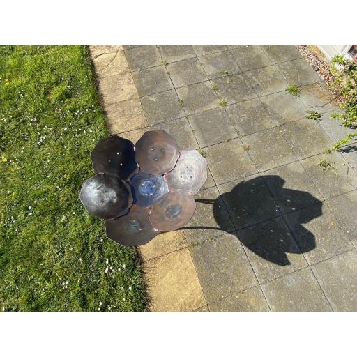 crocus fire bowl shadow.jpg