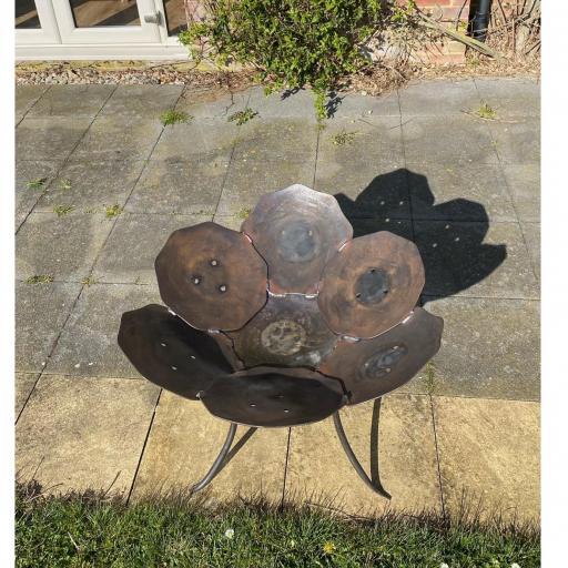 crocus fire bowl top.jpg