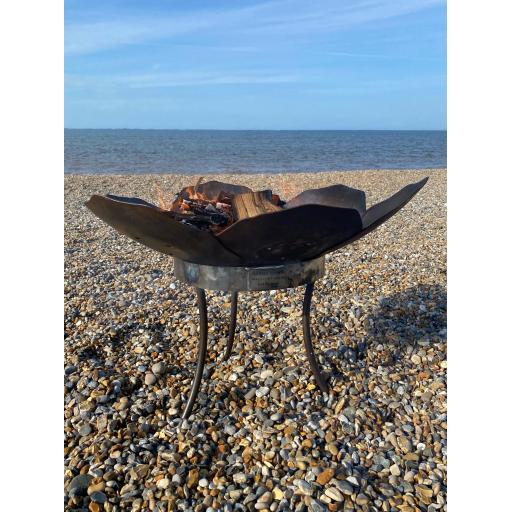 crocus fire bowl beach bbq flame.jpg